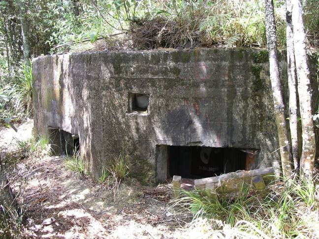 WW2 Pillbox off Mamaku Track